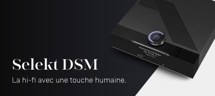 Selekt DSM